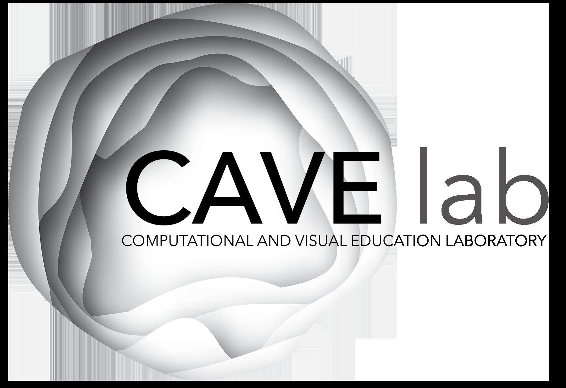 MIT CAVE Lab
